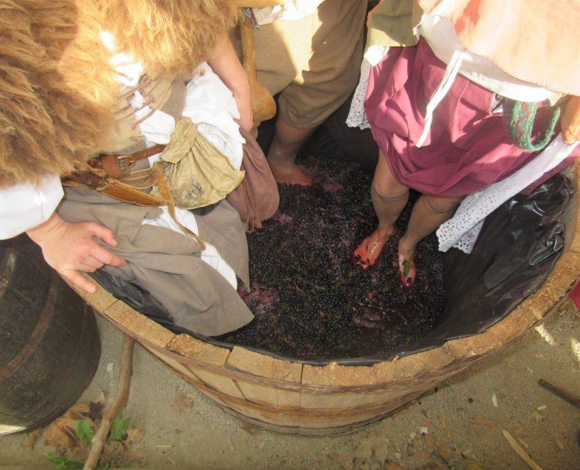 Foulée du raisin aux pieds